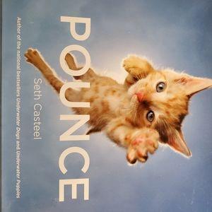 """Book """"POUNCE"""""""